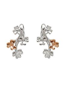 9Ct White Gold Love Shamrock Diamond Set Stud Earrings