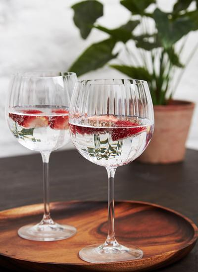 Galway Crystal Erne Gin & Tonic Pair