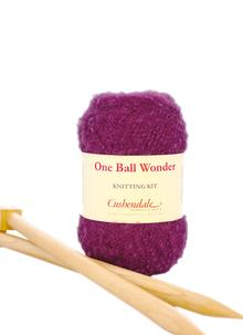 One Ball Wonder Knitting Kit Fox Glove