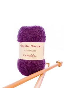 One Ball Wonder Knitting Kit Grape