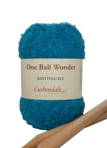 One Ball Wonder Knitting Kit Turquoise